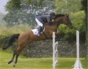 Donnacha Dermody, Side Show Bob, Irish Sport horse, Irish Show jumping
