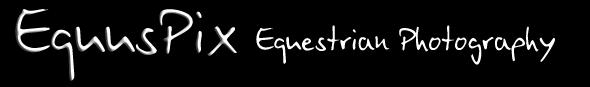 Equus Pix