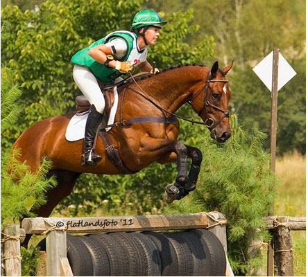 ussia Gully © Photo by flatlandsfoto. 2007 16.3hh TB gelding by Strong Hope. Winner of his first event last winter, 6th in his first Training at GMHA. Quiet and kind. Hunter prospect also. Winner of his YEH division at Stony Brook in 2011 with a score in the high 70's, qualifying him for the East Coast YEH Championships.