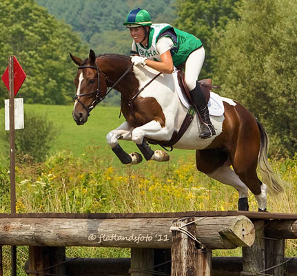 2006 16hh Paint/TB gelding. Flashy with three great gaits and a fantastic jump. 2nd in his first BN at GMHA. Sold in 2011.
