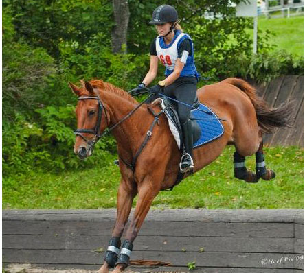 Margarita III 1998 16.1hh American Oldenburg mare. Competitive Training level event horse with an amateur, ribbons at Training in 6 of last 8 events. Now winning at beginner novice in Canada with her new young rider. Sold in 2011.