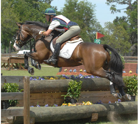 The Real Deal 2000 16.3hh ISH by Maltsriker, bought in 2004 at the Goresbridge Sales in Ireland from Clare Lambert. Several wins at Preliminary, winner at his first Intermediate at GMHA, 6th at Millbrook in 2009. Now competing at the Preliminary and CCI* level with YR Autumn Schweiss.